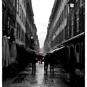 Under the rain... by Alicia Acosta (AliciaAcosta)) on 500px.com