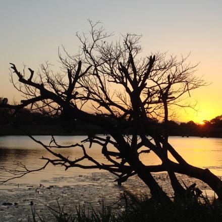 Sunset, Sony DSC-N2