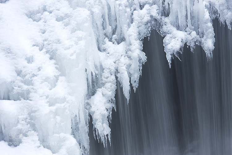 Photograph Frosty goodness by Angela King-Jones on 500px