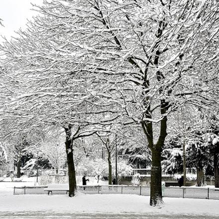 Blanche neige, Nikon D7000, Sigma 18-250mm F3.5-6.3 DC OS HSM