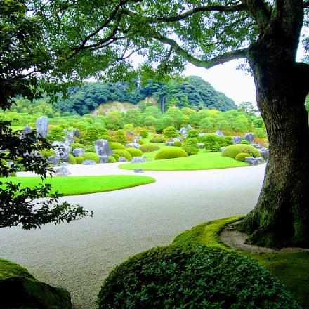 Japanese Gardens, Panasonic DMC-FX01