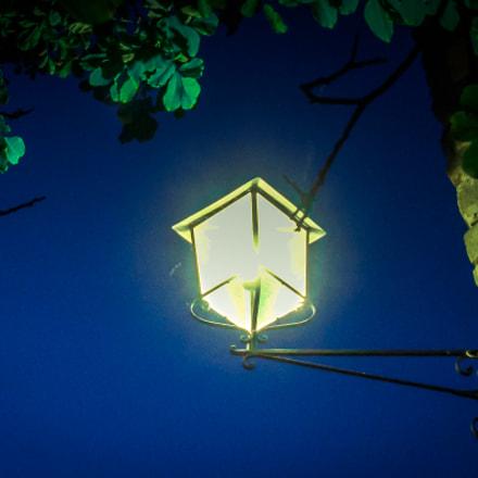 The Lamp I. Italy., Sony DSC-W300