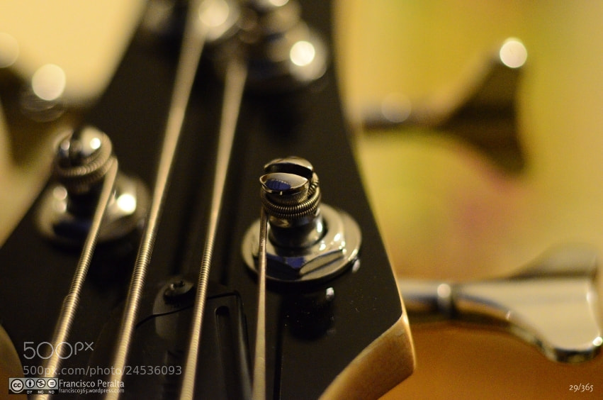 Photograph My bass by Francisco Peralta on 500px
