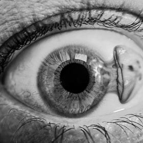 Ephemeral visualizations | Eyellyfish