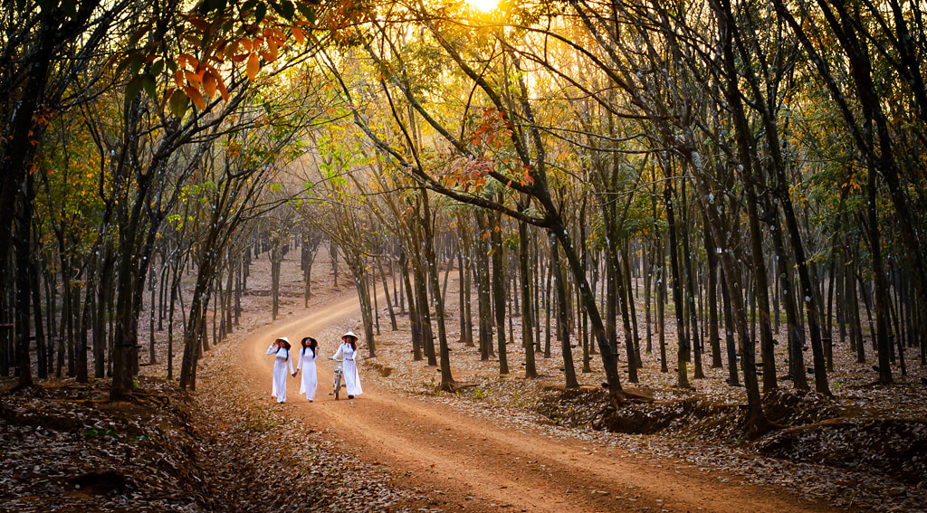 Photograph Ao dai 01 by Phuc Thang on 500px