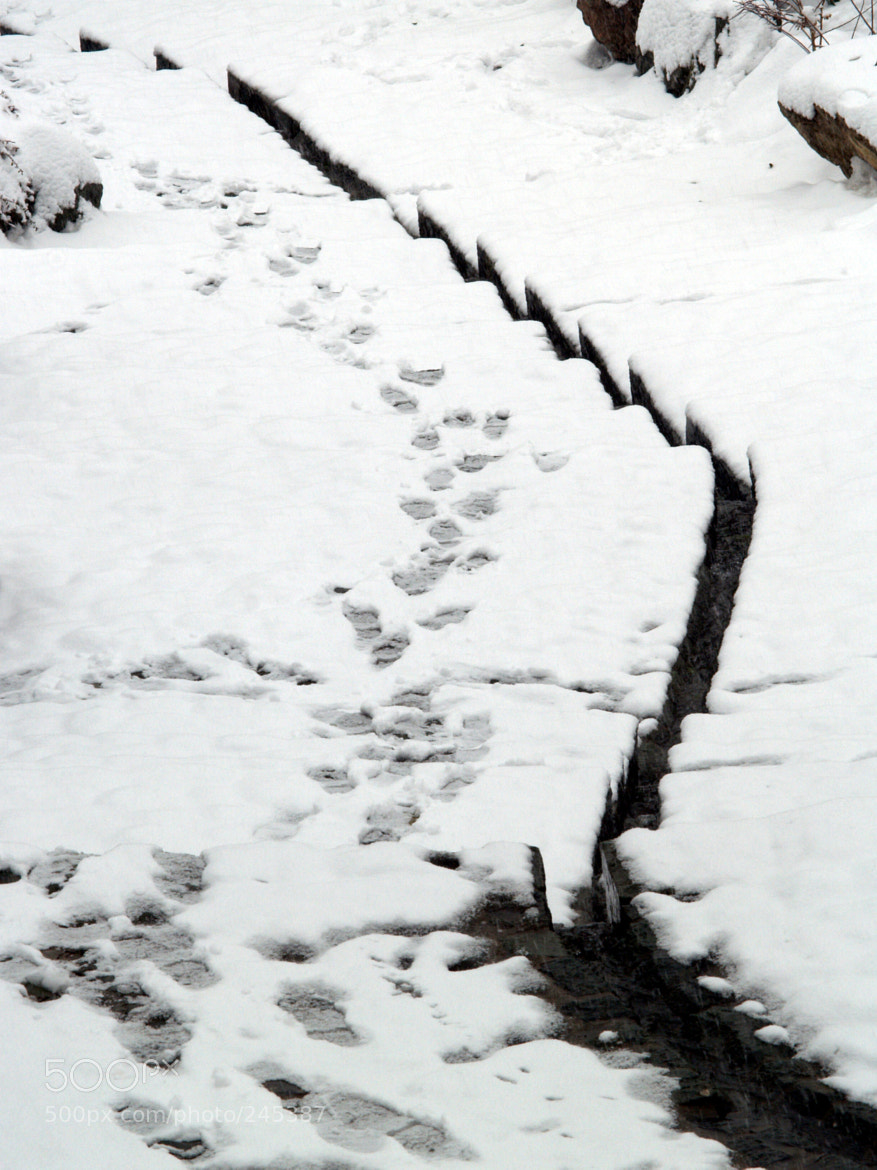 Photograph foot prints by azad pirayandeh on 500px