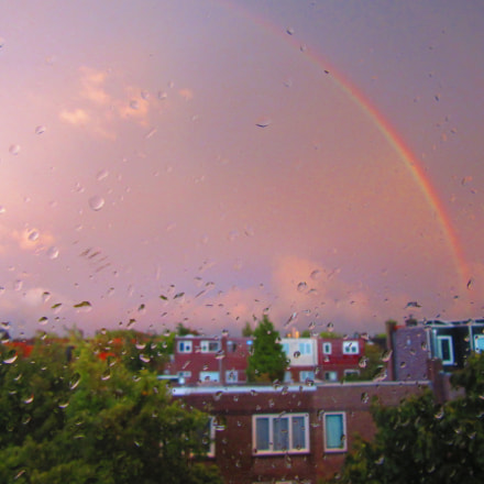 From my window, Canon POWERSHOT SX600 HS