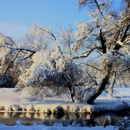 Красоты зимы, Canon EOS 500D, Canon EF 28-80mm f/3.5-5.6 USM IV