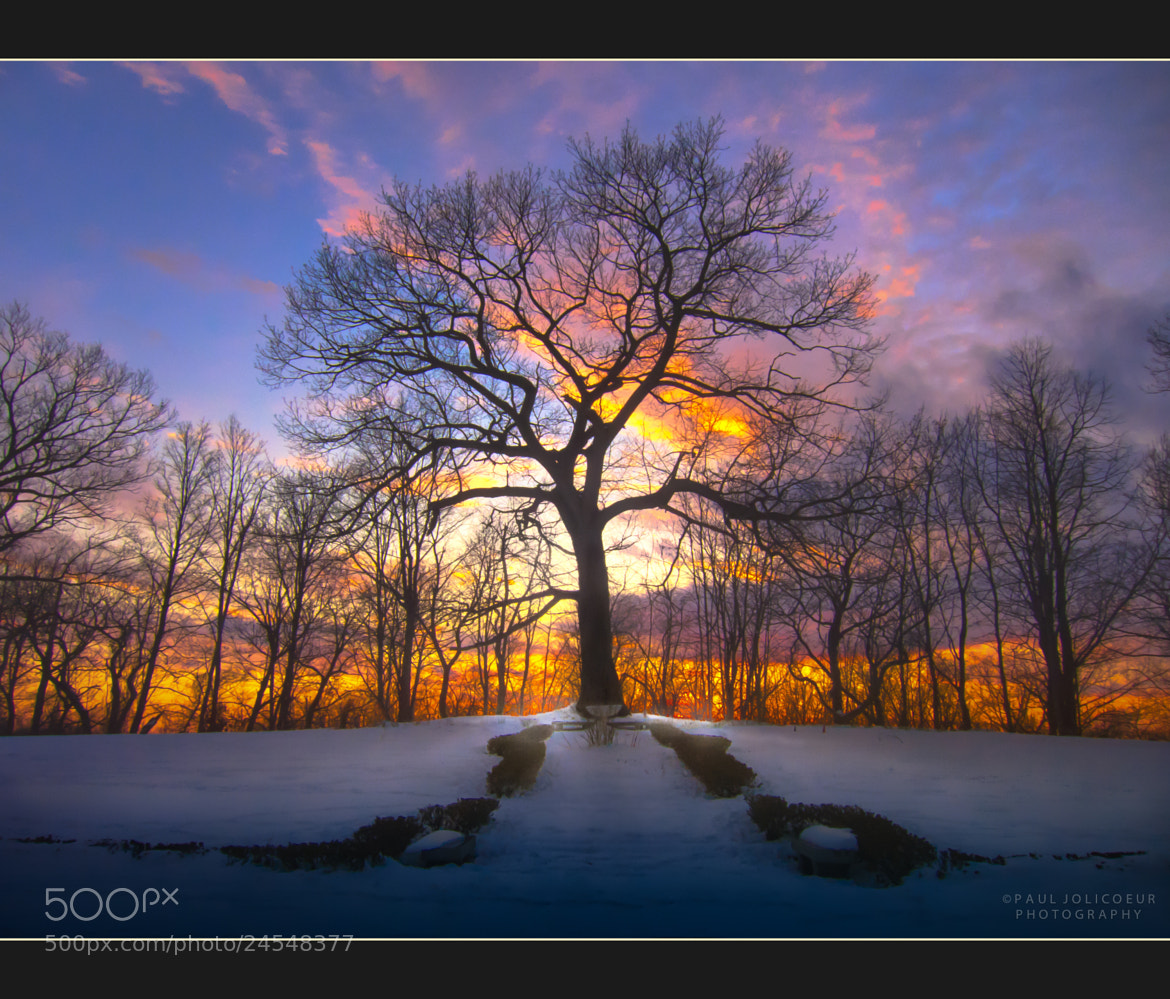 Photograph Winter Sunset by Paul Jolicoeur on 500px