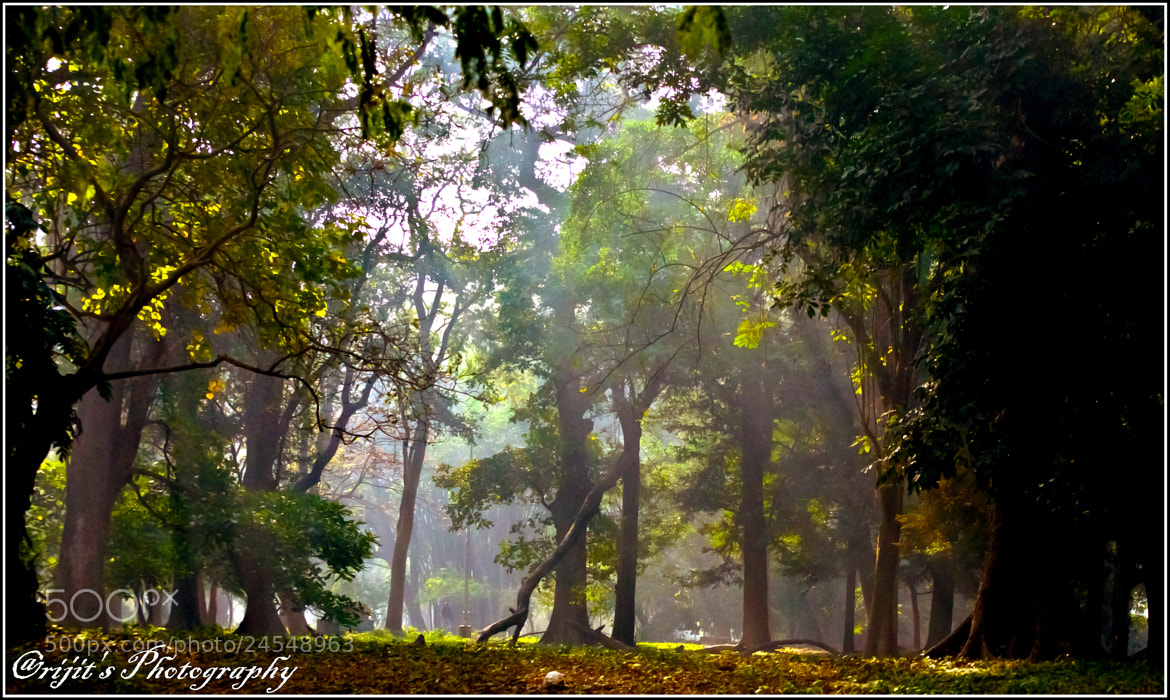 Photograph Morning Glory by Arijit Bose on 500px
