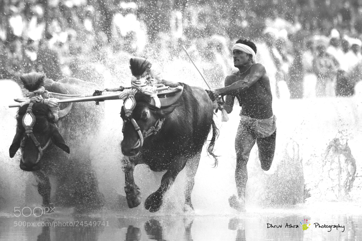 Photograph Race it by Dhruv Ashra on 500px