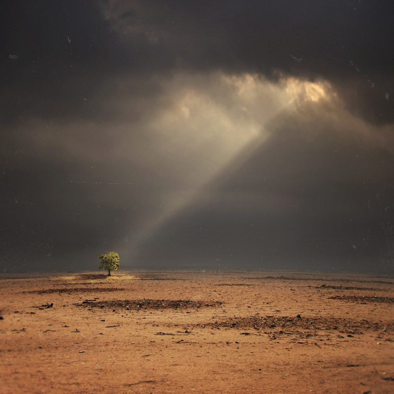 Photograph Hope by Hossein Zare on 500px