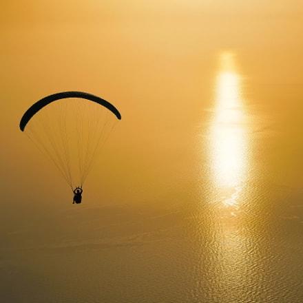 towards the sun / 090218029, Sony ILCE-7RM2