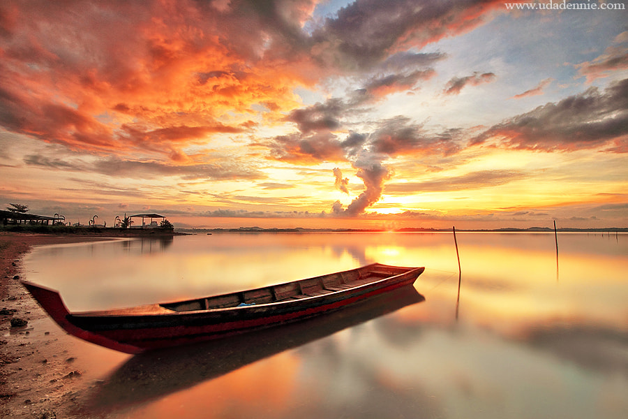 Photograph golden morning by Uda Dennie on 500px