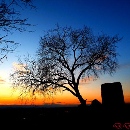 Last sun rays, Fujifilm FinePix S8300
