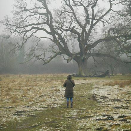 Winter landscape with woman, Nikon COOLPIX S3400