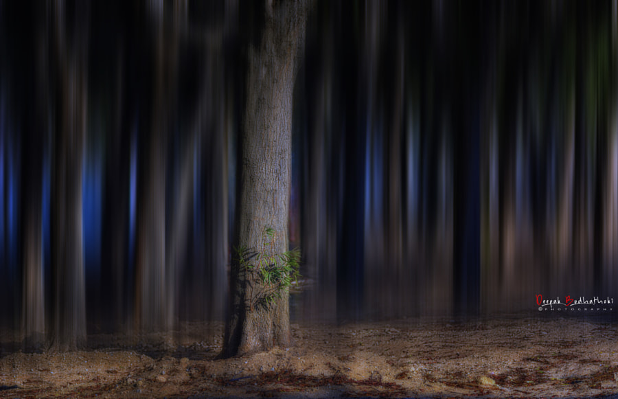 Dreamy by Deepak Budhathoki on 500px.com