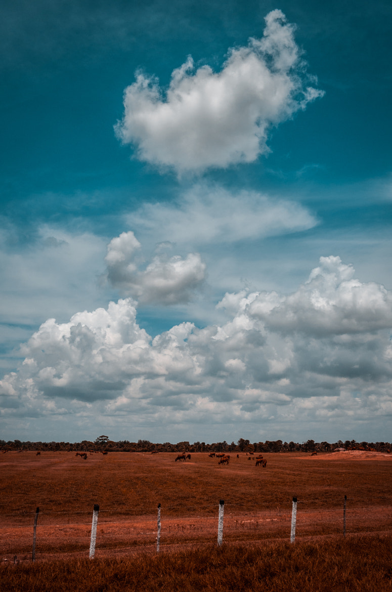 Photograph __clouds__ by Paolo Giraudo on 500px