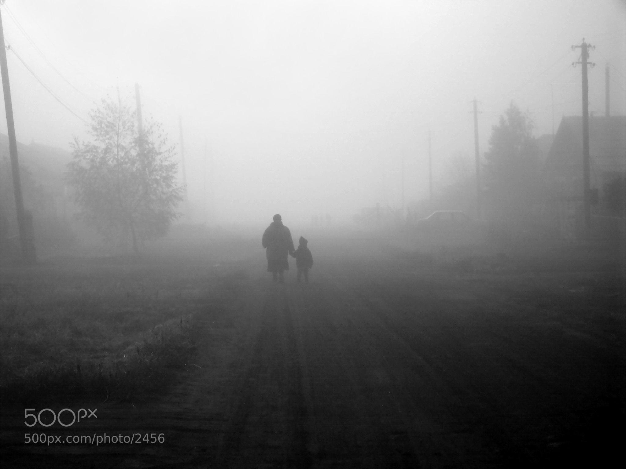 Photograph Туманное осеннее утро by Aleksey Panko on 500px