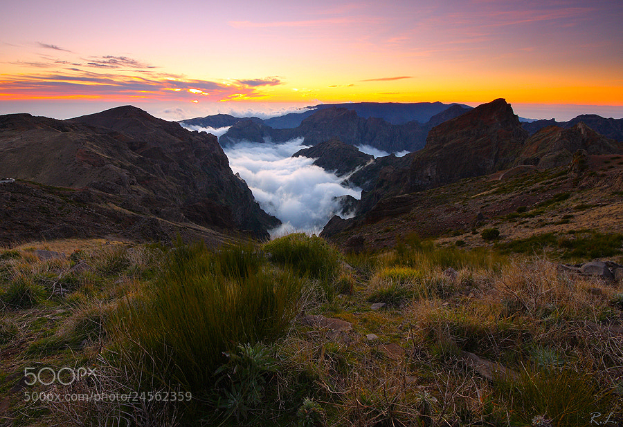 Photograph  Pico do Arieiro by Renato Lourenço on 500px