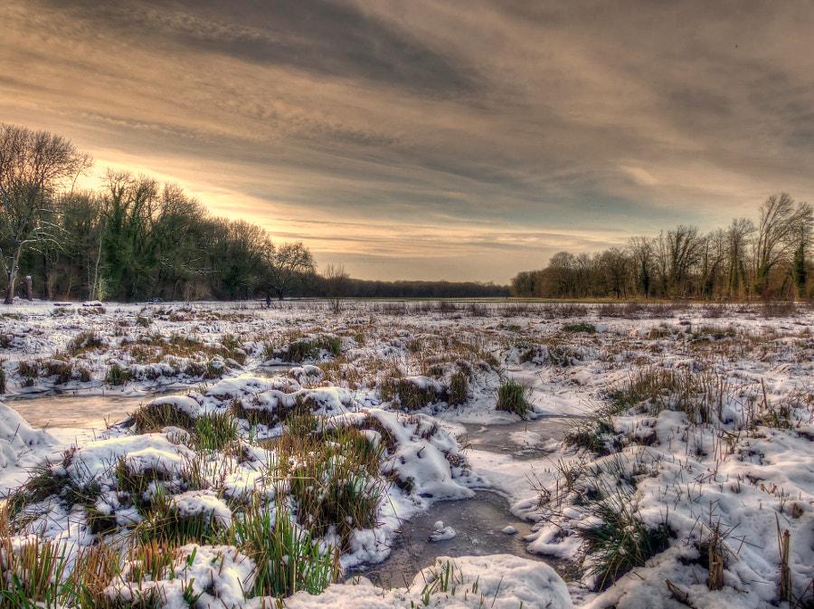 Winter is... ENDING ! V2?user_id=21302955&webp=true&sig=dad893bd63deb8913f3b804bbec440354d9f0dbd6a3f770ca69331fb00737aec