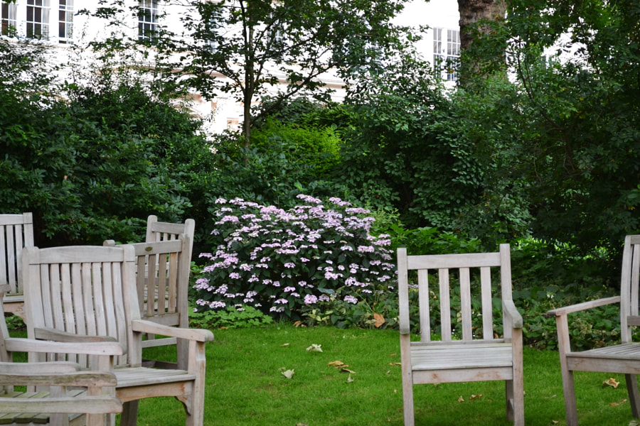 Carlton Terrace Gardens, London by Sandra on 500px.com