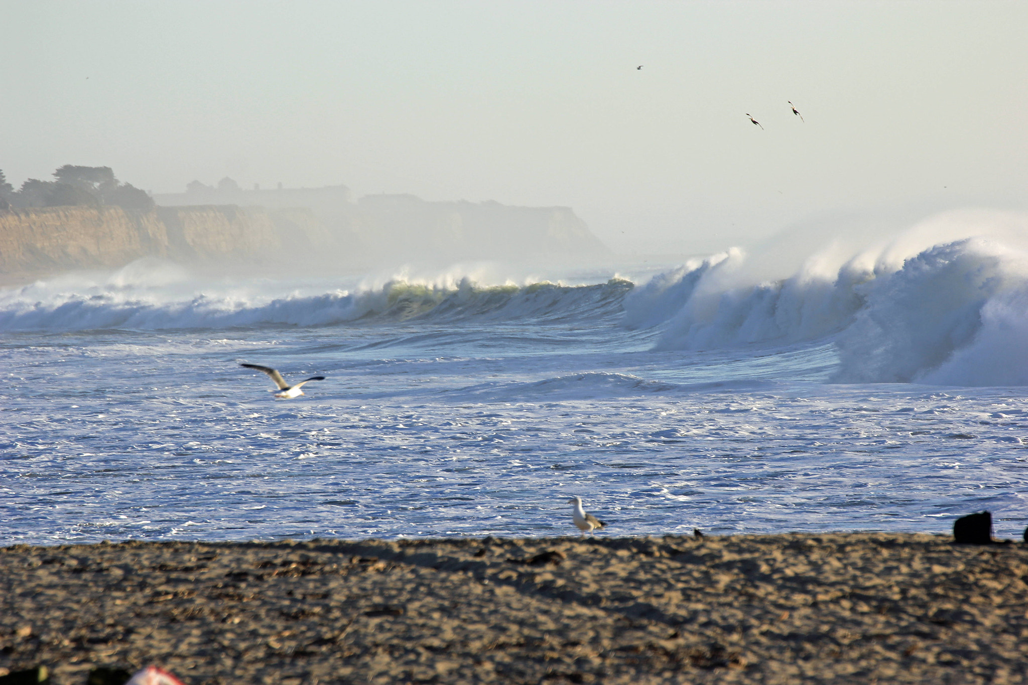 Photograph Half Moon Bay Beach by James Roberts on 500px