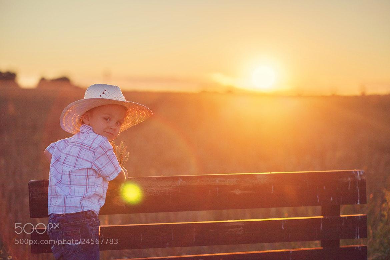 Photograph Summer sunset by Tatyana Tomsickova on 500px