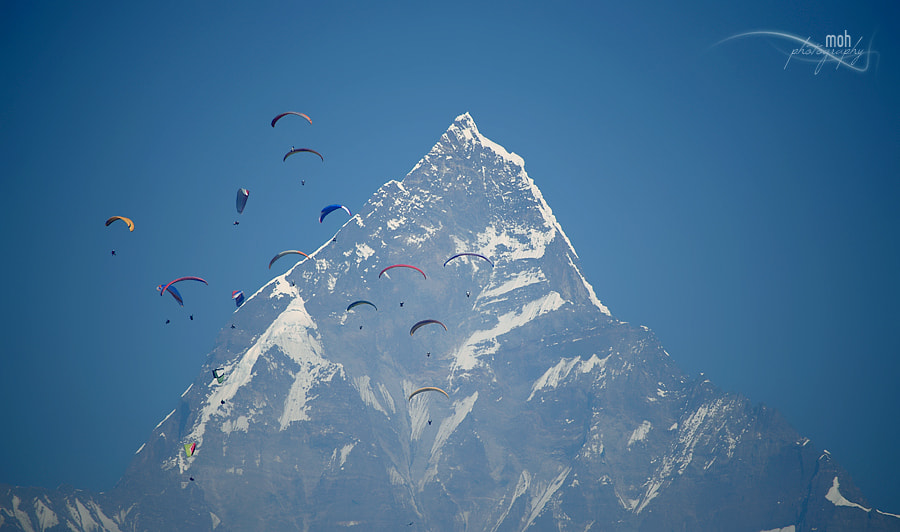 Photograph 16 Paragliders by Mohan Duwal on 500px