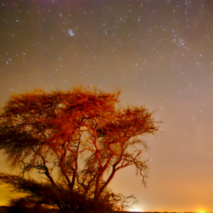 Night sky, Nikon D60, Sigma 17-50mm F2.8 EX DC OS HSM