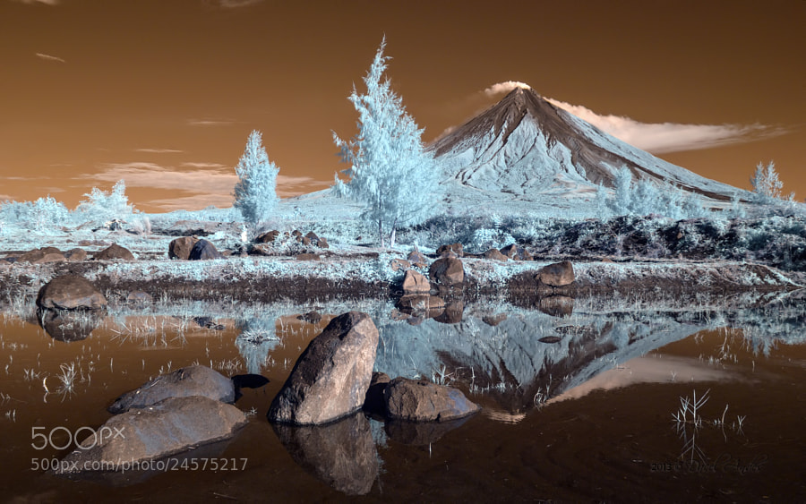 Photograph Raw IR Colours by Dacel Andes on 500px