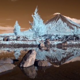 Raw IR Colours by Dacel Andes (DacelAndes)) on 500px.com