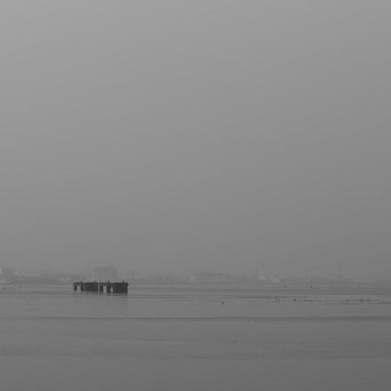 fog, Canon EOS 700D, Tamron 70-200mm f/2.8 Di LD IF Macro