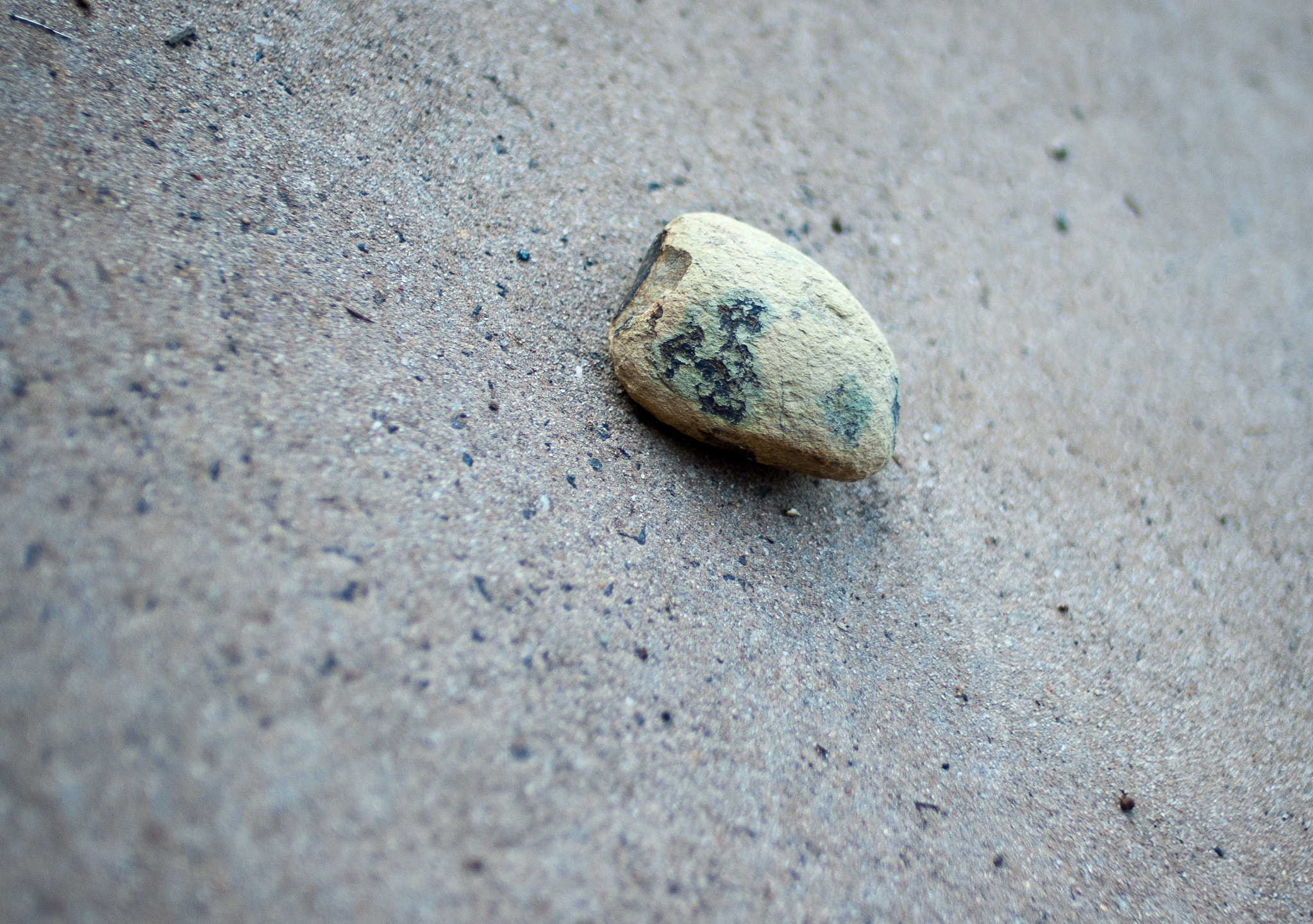 Photograph stranded pebble by alistair noble on 500px