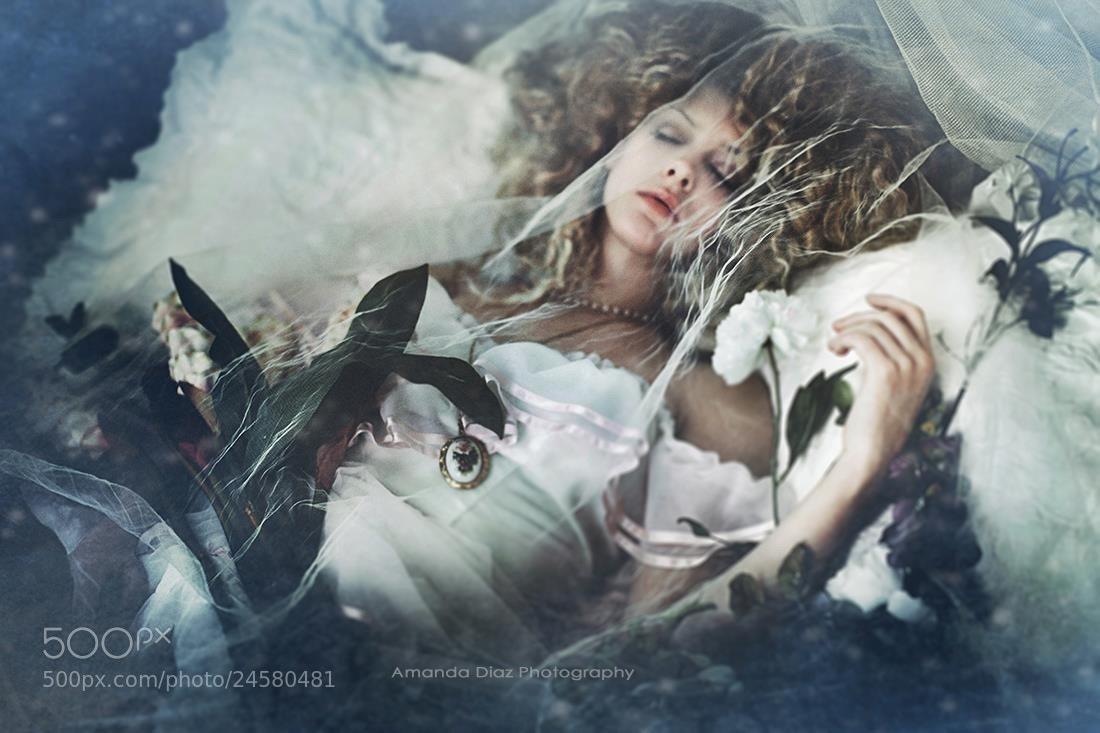 Photograph Sleeping Beauty by Amanda Diaz on 500px