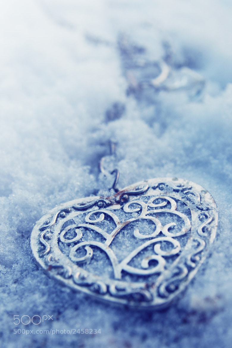 Photograph My frozen heart by Elise  Enchanted on 500px