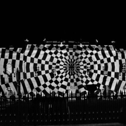 Intoxicated zebra, Nikon D3100, AF-S DX Zoom-Nikkor 18-55mm f/3.5-5.6G ED