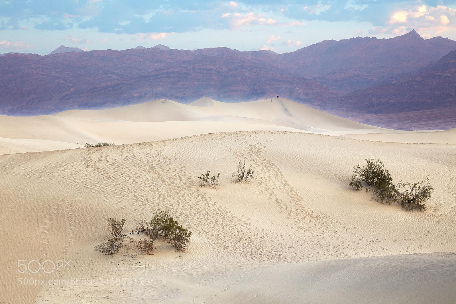 Mesquite Flat Sand Dunes, Canon EOS 5DS R, Canon EF 24-105mm f/4L IS USM