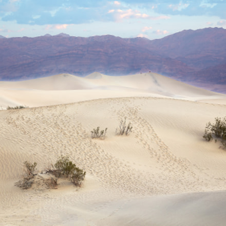 Mesquite Flat Sand Dunes, Canon EOS 5DS R, Canon EF 24-105mm f/4L IS USM