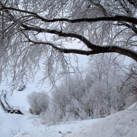 From the winter, Fujifilm FinePix S3Pro
