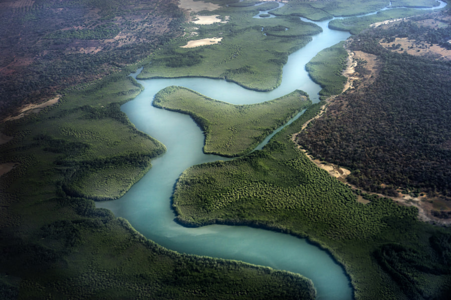 Flying over the Gambian Mangroves by Steve Baker on 500px.com