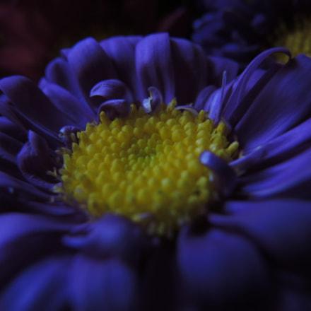 El color del nombre, Nikon COOLPIX P7700