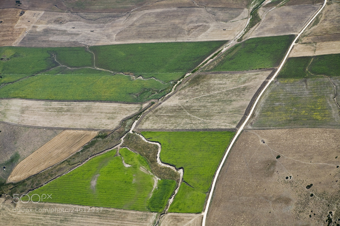 Photograph Green and brown fields by Thierry Delsart on 500px