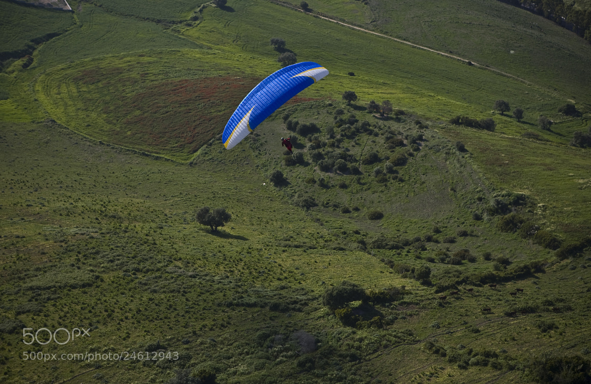 Photograph Paraglider over green by Thierry Delsart on 500px