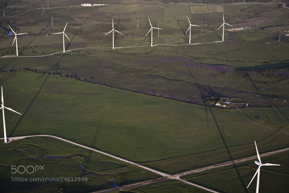 Photograph windmills and gentians by Thierry Delsart on 500px
