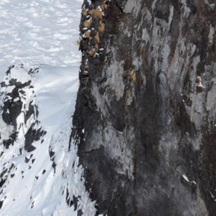 frozen cliff, Nikon COOLPIX P7700