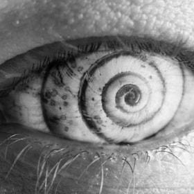 Ephemeral visualizations | Snail Sheyell