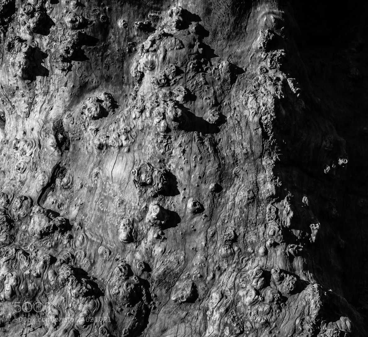 Photograph Moonscape close-up by Christoffer Gebel on 500px