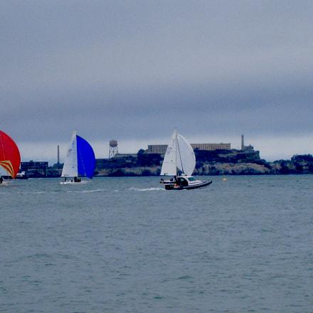 Regatta, Alcatraz, San Francisco, Canon POWERSHOT SD870 IS