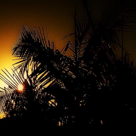 sunset ....., Fujifilm FinePix SL1000